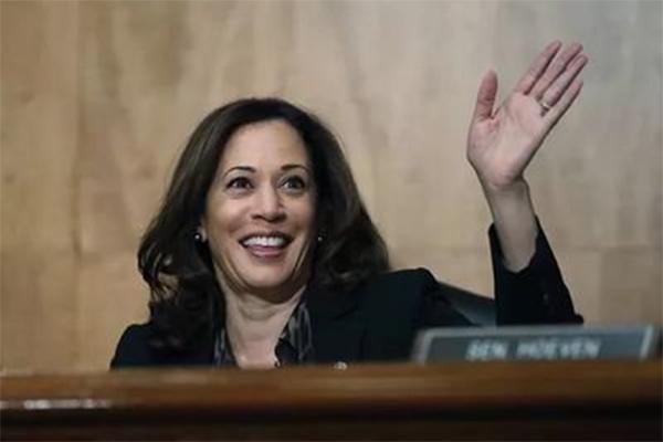 女版奥巴马参选总统,女版奥巴马,2020年竞选总统