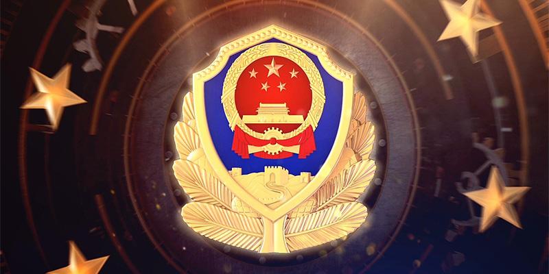 公安部领导班子调整,公安部,李伟,杜航伟,副部长