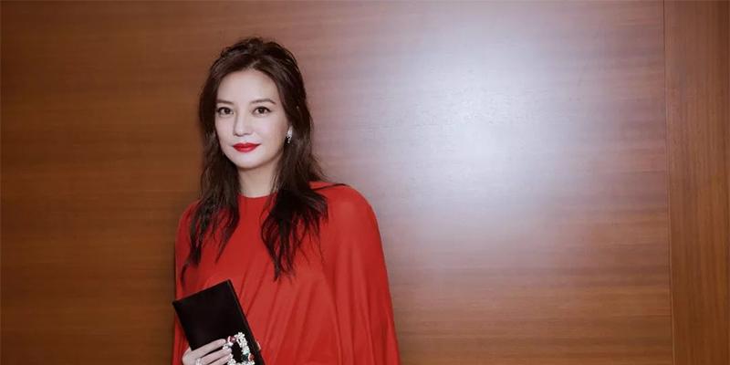 媒体评赵薇再次被罚,赵薇再次被罚,赵薇夫妇,女版巴菲特