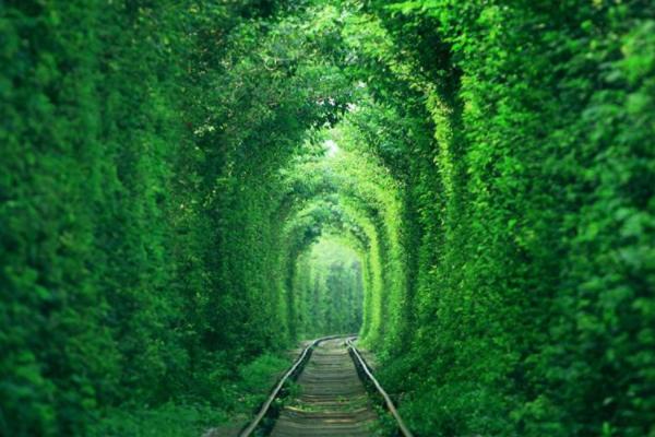 愛情隧道南京最清新的鐵路,情侶私會的天堂