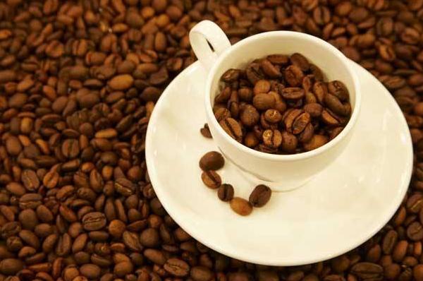 猫屎咖啡的由来简介,猫屎咖啡为何备受欢
