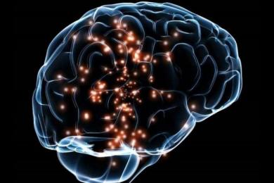 模拟人脑项目彻底宣告失败,人类大脑远比想象的要复杂