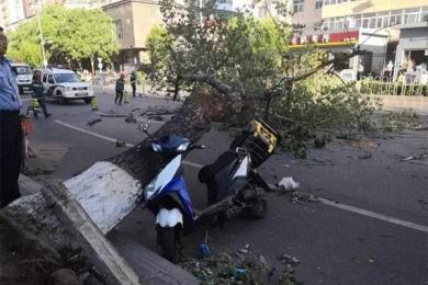 大风致4人被砸身亡是怎么回事?北京天气持续反常