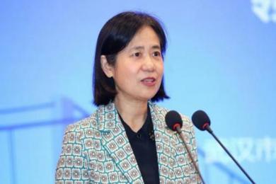 武汉市副市长徐洪兰被查 到底是怎么回事?徐洪兰犯了什么事?