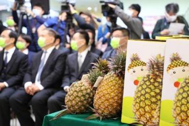 台湾菠萝出口日本,打个六折都销路难求
