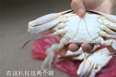 暗访海鲜市场死蟹变活蟹 商家怒怼暗访记者:事太多,不卖了!