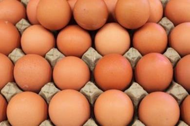 全球确诊超576万例_张文宏称每天吃3-4个鸡蛋是治疗确诊主要处方之一