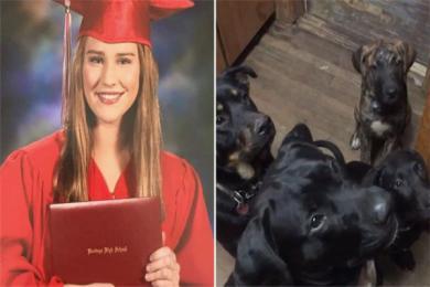 美国一19岁女孩被5只獒犬活活咬死 一度被抛飞至空中失血过多致死