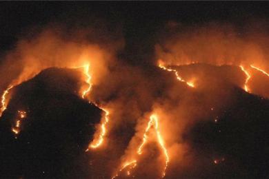 巴西森林火灾数量激增,亚马逊热带雨林成重灾区