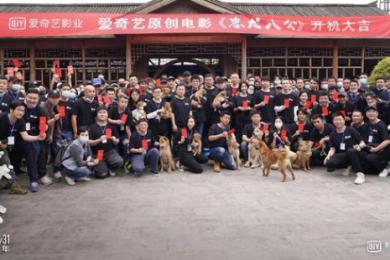 中国将翻拍忠犬八公,冯小刚等实力派影星助阵